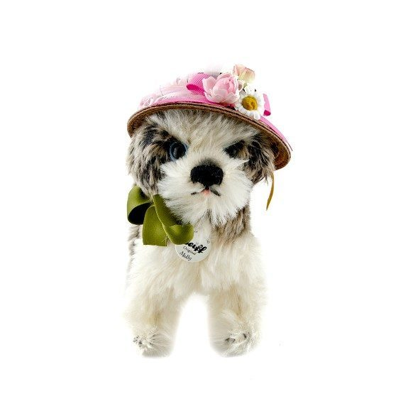 MOLLY DOG IN HAT